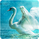Legend of Lir for Android
